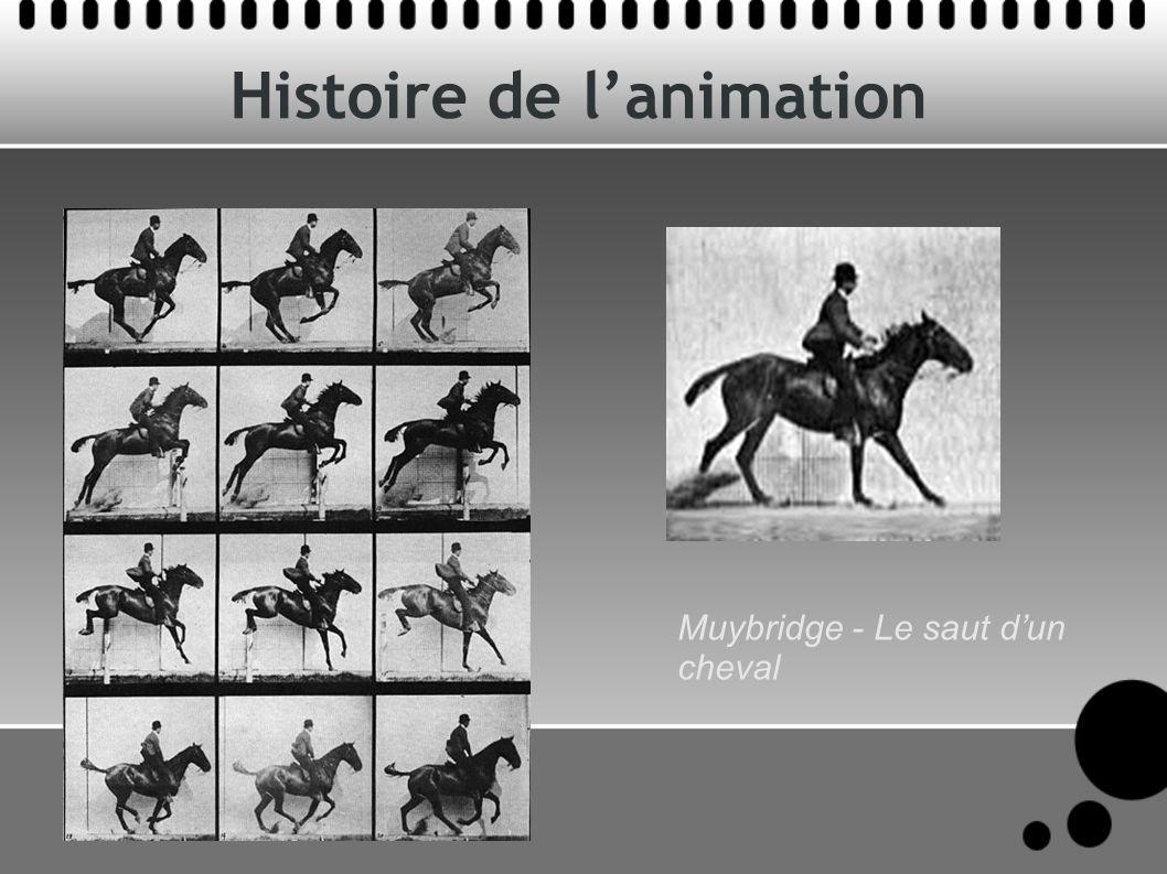 Histoire de lanimation Muybridge - Le saut dun cheval