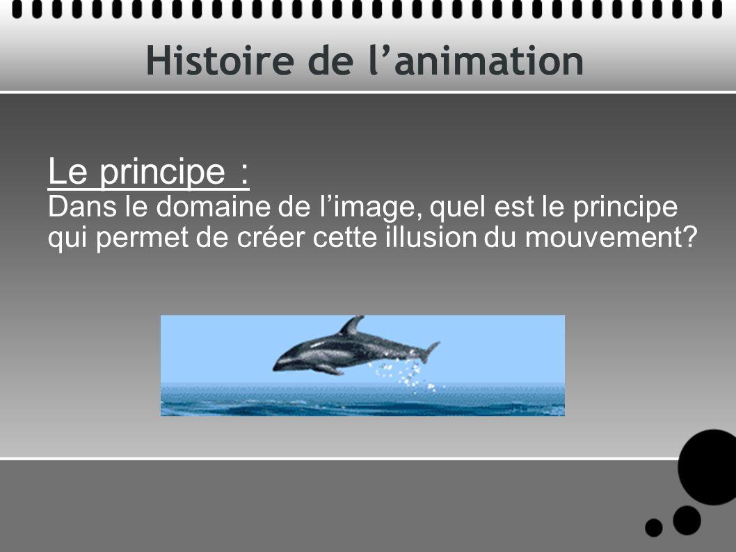 Histoire de lanimation Le mouvement est décomposé en une succession d images fixes dont la vision à une fréquence donnée donne l illusion du mouvement continu.