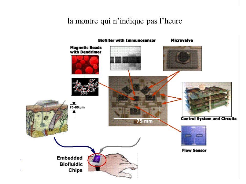 LES SYSTEMES MICROFLUIDIQUES SONT INTERESSANTS, PROBABLEMENT POUR 3 RAISONS - La miniaturisation bouleverse les équilibres physiques de manière souvent intéressante - Microfluidique et parallélisme engendrent, lorsquils sont associés, des systèmes parfois étonnants - Il est nécessaire de maitriser les écoulements pour élaborer des laboratoires sur puce