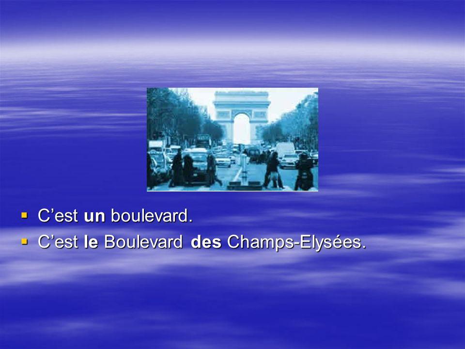 Cest un boulevard. Cest un boulevard. Cest le Boulevard des Champs-Elysées.