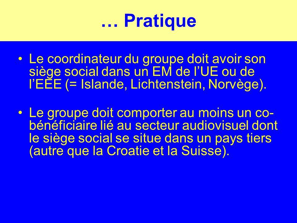 … Pratique Le coordinateur du groupe doit avoir son siège social dans un EM de lUE ou de lEEE (= Islande, Lichtenstein, Norvège).
