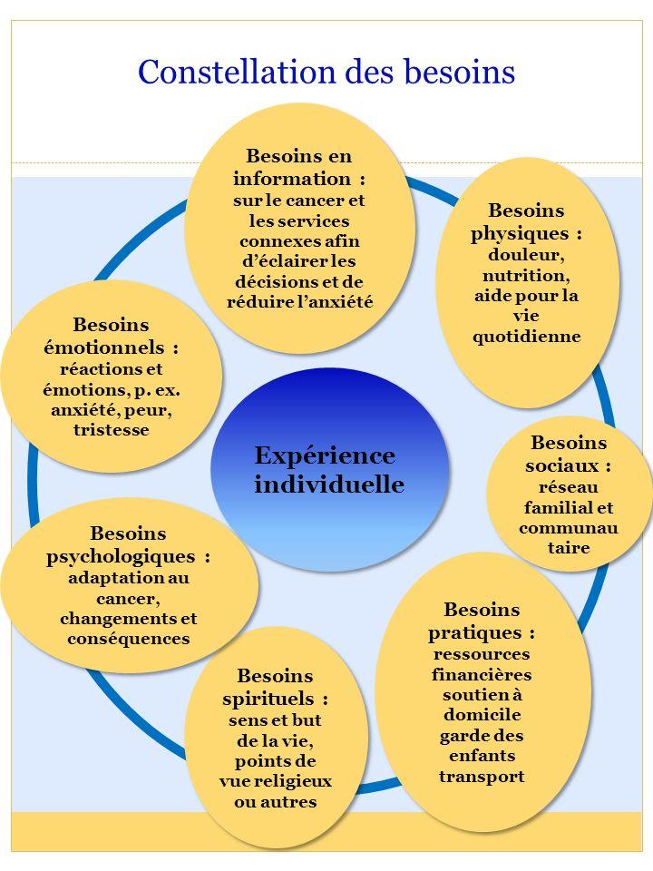Constellation des besoins Expérience individuelle Besoins spirituels : sens et but de la vie, points de vue religieux ou autres Besoins spirituels : s