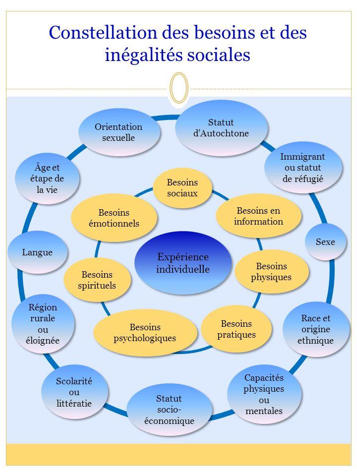 Constellation des besoins et des inégalités sociales Statut socio- économique Race et origine ethnique Statut dAutochtone Capacités physiques ou menta