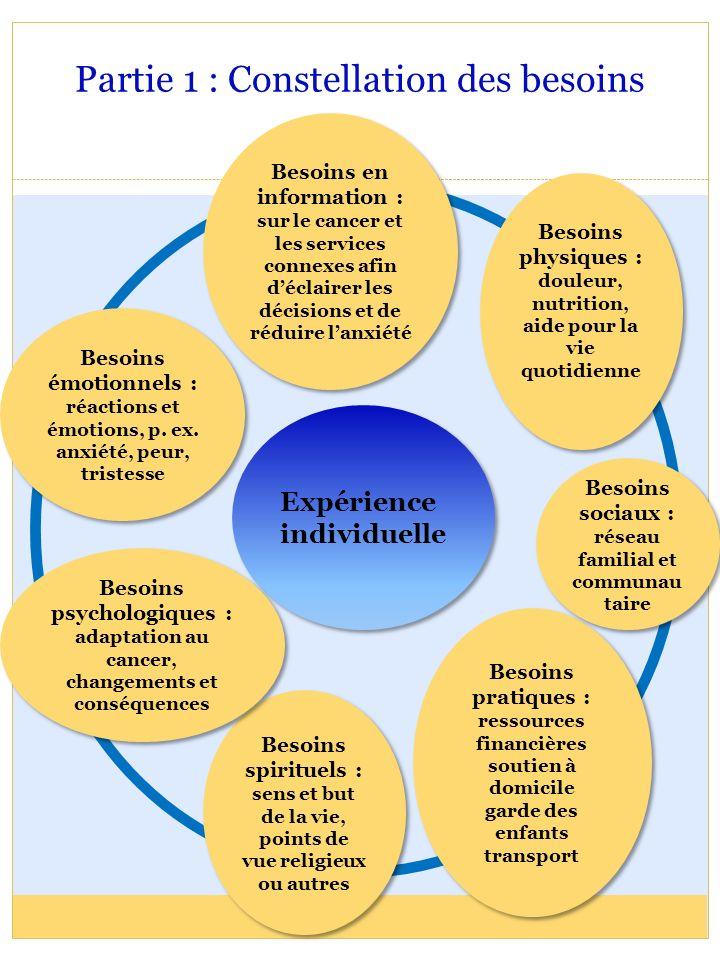 Partie 1 : Constellation des besoins Expérience individuelle Besoins spirituels : sens et but de la vie, points de vue religieux ou autres Besoins spi