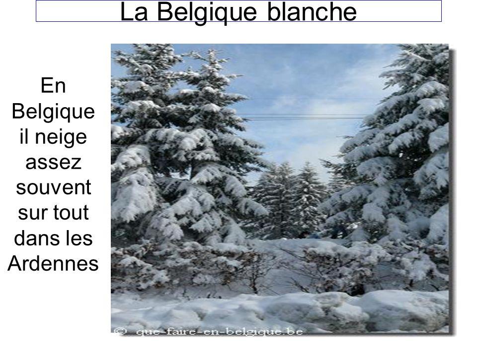 Le 10 PROVINCES En Belgique on a 10 provinces -west-vlaanderen -luxemburg -Oost-vlaanderen -henegouwen -antwerpen -bergen -limburg -namuur -vlaams-braband -luik