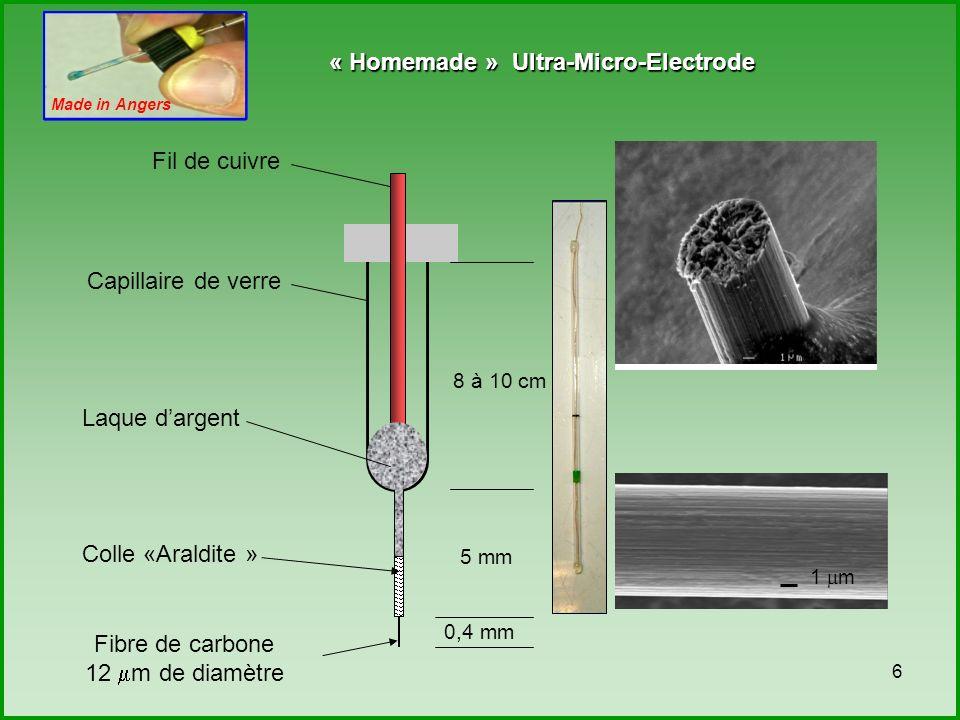 7 Recollage Jeter lUME Égaliser la longueur de la fibre à 0,4 cm Rinçage au tampon Jeter lUME Test oxydation du Fe(CN) 6 K 3 avant nettoyage Nettoyage électrochimique au H 2 SO 4 /EtOH Test oxydation du Fe(CN) 6 K 3 après nettoyage Rinçage au tampon Répétition du nettoyage électrochimique UME prête à lemploi présence de puit pas de puit trop courte trop sale trop de bruit pas de réponse Nettoyage pas efficace Nettoyage efficace Fabrication et contrôle qualité des UME Observation microscopique Fabrication UME Test électrochimique Étanchéité .