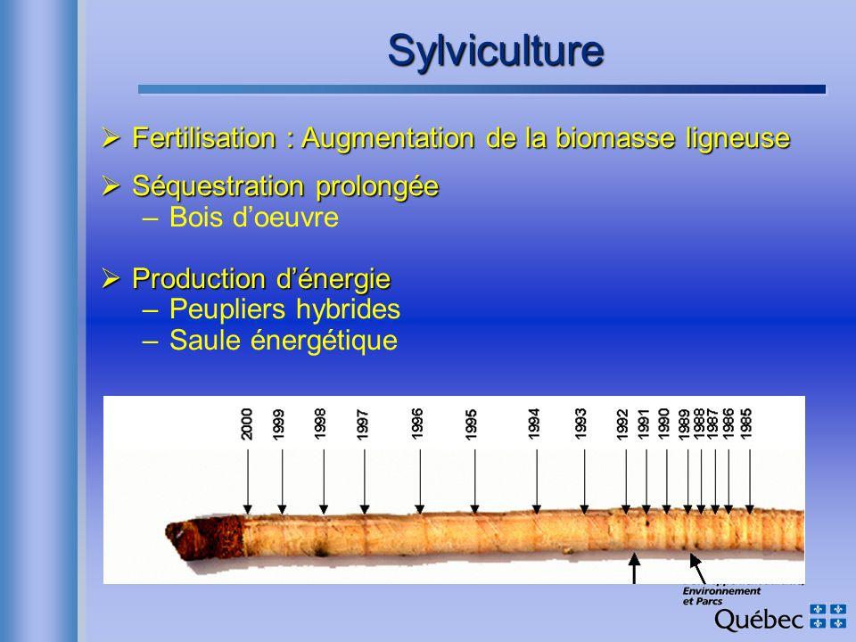 Sylviculture Fertilisation : Augmentation de la biomasse ligneuse Fertilisation : Augmentation de la biomasse ligneuse Séquestration prolongée Séquest
