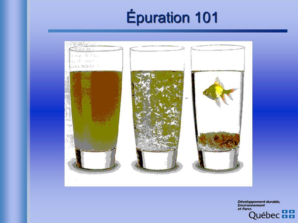 Épuration 101