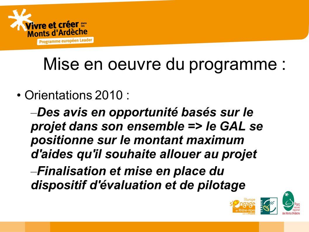 Mise en oeuvre du programme : Orientations 2010 : – Des avis en opportunité basés sur le projet dans son ensemble => le GAL se positionne sur le montant maximum d aides qu il souhaite allouer au projet – Finalisation et mise en place du dispositif d évaluation et de pilotage