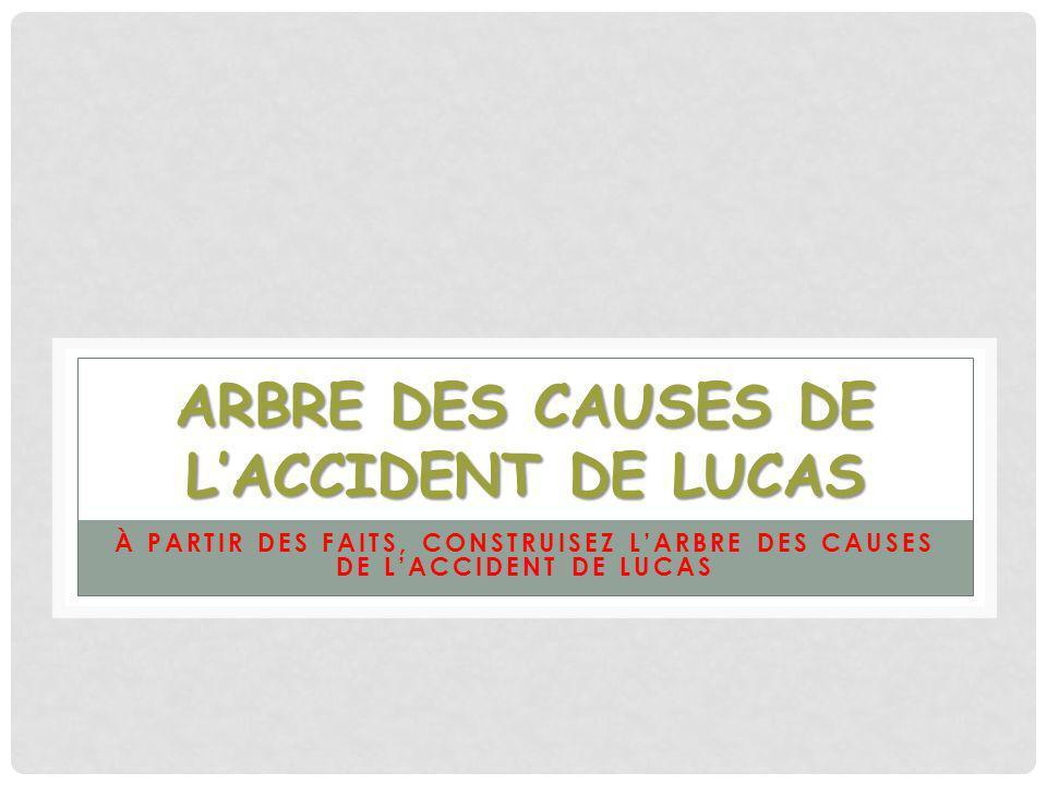ARBRE DES CAUSES DE LACCIDENT DE LUCAS À PARTIR DES FAITS, CONSTRUISEZ LARBRE DES CAUSES DE LACCIDENT DE LUCAS