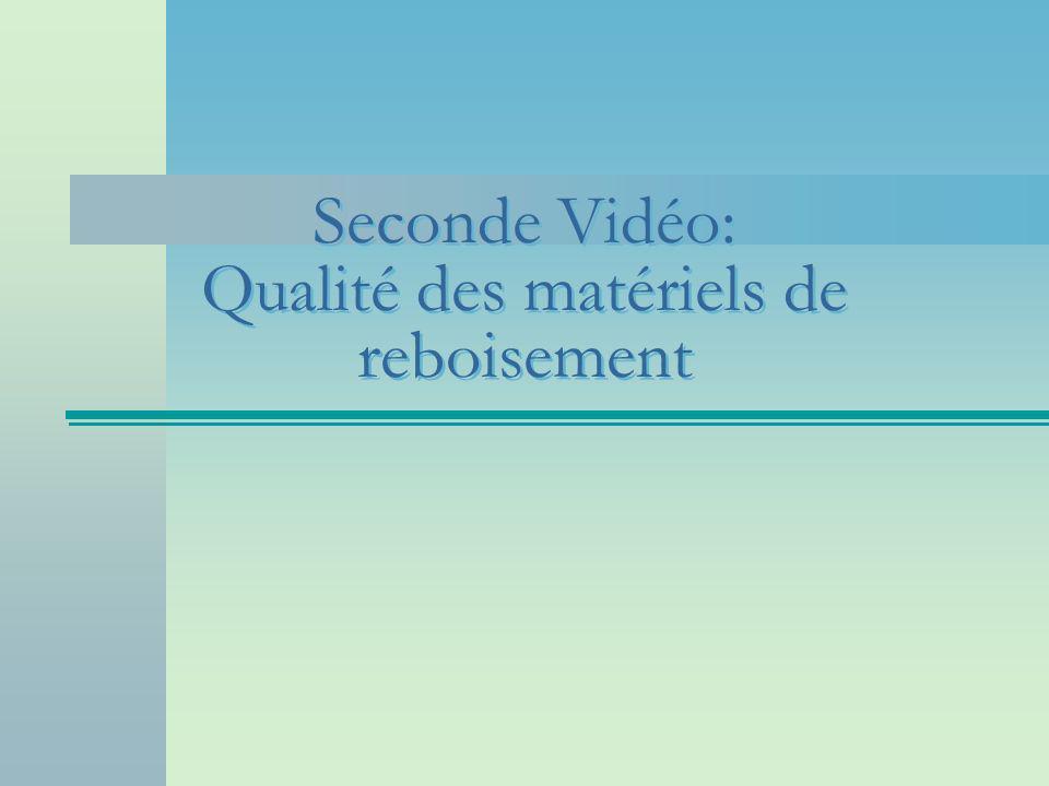Seconde Vidéo: Qualité des matériels de reboisement