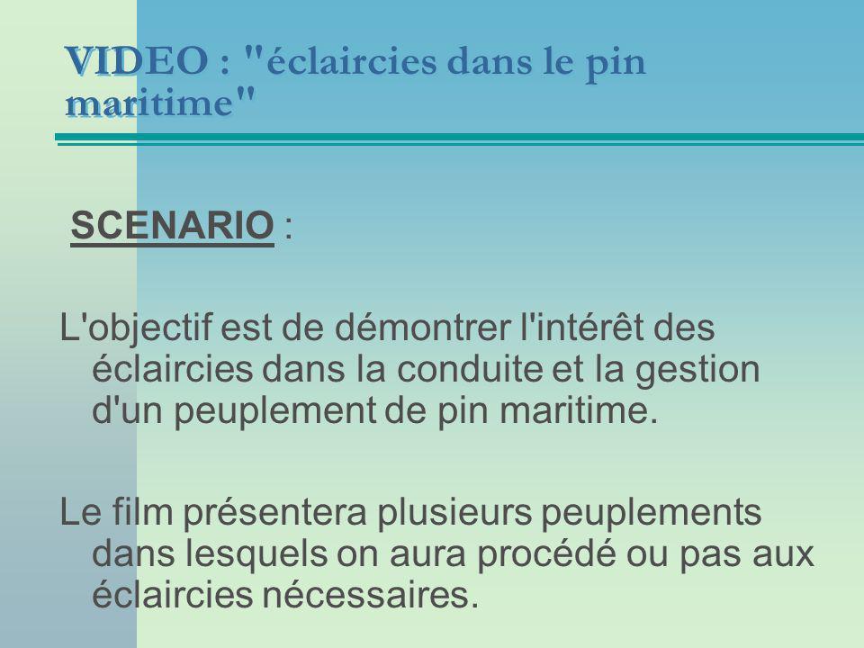 VIDEO : éclaircies dans le pin maritime SCENARIO : L objectif est de démontrer l intérêt des éclaircies dans la conduite et la gestion d un peuplement de pin maritime.