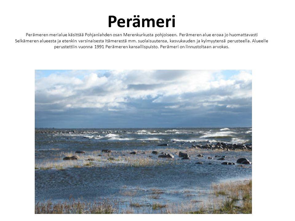 Perämeri Perämeren merialue käsittää Pohjanlahden osan Merenkurkusta pohjoiseen. Perämeren alue eroaa jo huomattavasti Selkämeren alueesta ja etenkin