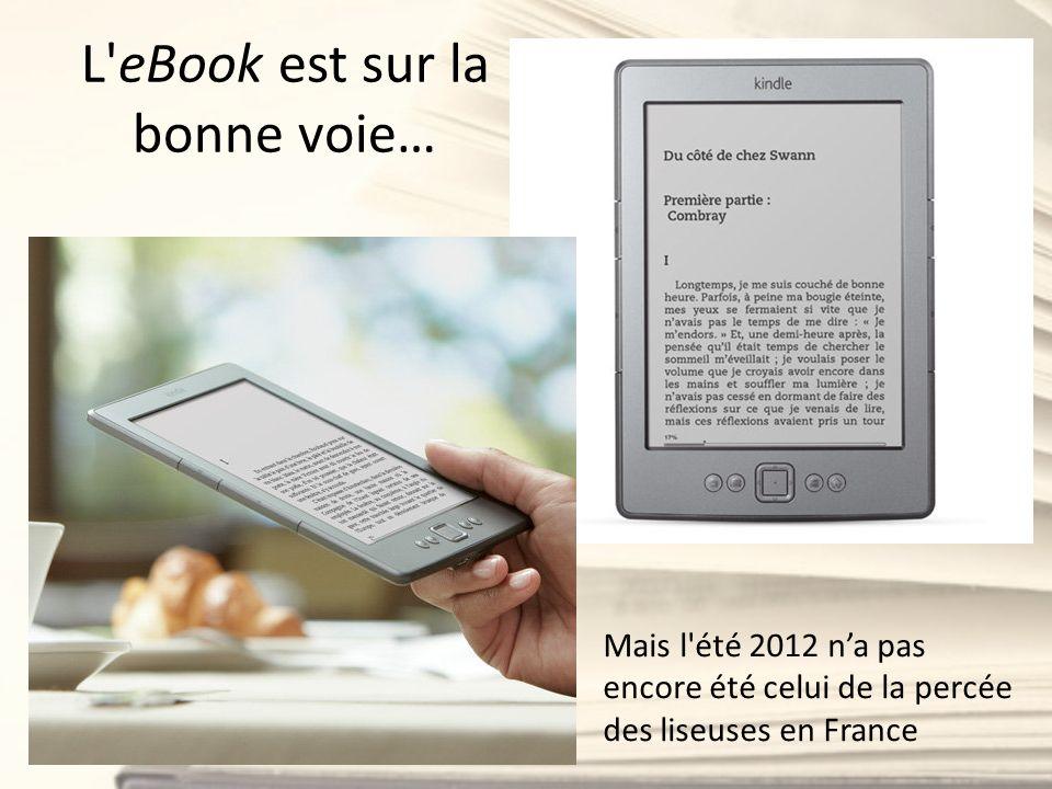 L'eBook est sur la bonne voie… Mais l'été 2012 na pas encore été celui de la percée des liseuses en France