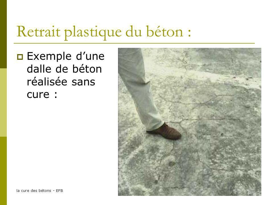 la cure des bétons - EFB13 Retrait plastique du béton : Exemple dune dalle de béton réalisée sans cure :