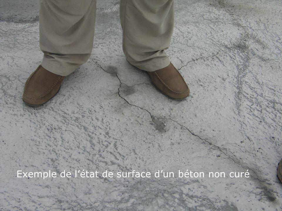 la cure des bétons - EFB14 Exemple de létat de surface dun béton non curé