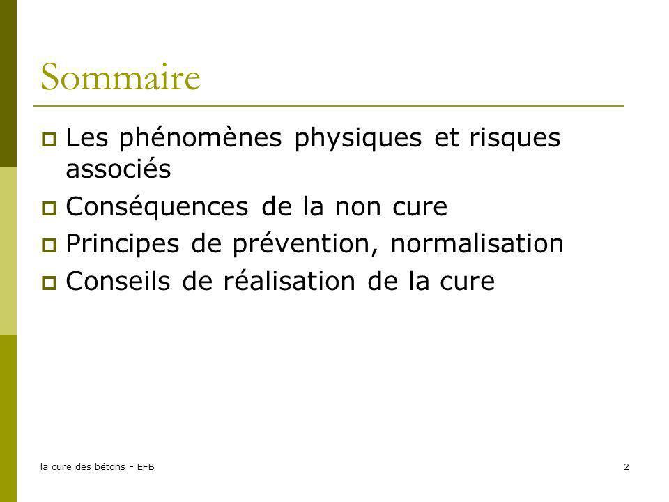 la cure des bétons - EFB2 Sommaire Les phénomènes physiques et risques associés Conséquences de la non cure Principes de prévention, normalisation Con