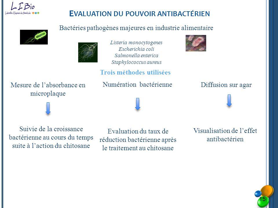 E VALUATION DU POUVOIR ANTIBACTÉRIEN Bactéries pathogènes majeures en industrie alimentaire Listeria monocytogenes Escherichia coli Salmonella enteric