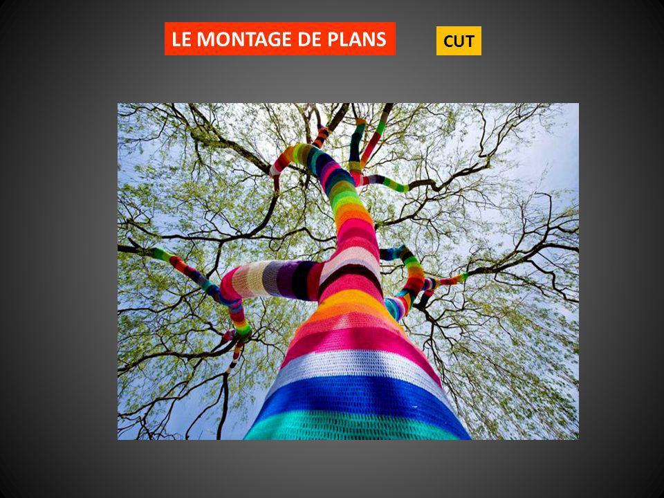 LE MONTAGE DE PLANS CUT