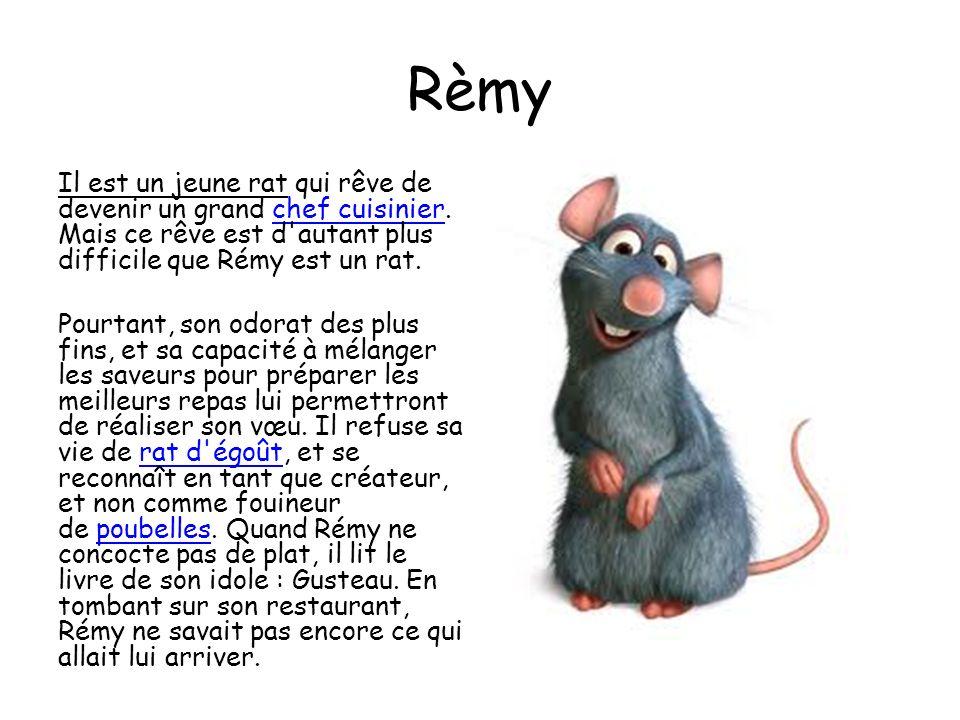 Rèmy Il est un jeune rat qui rêve de devenir un grand chef cuisinier.