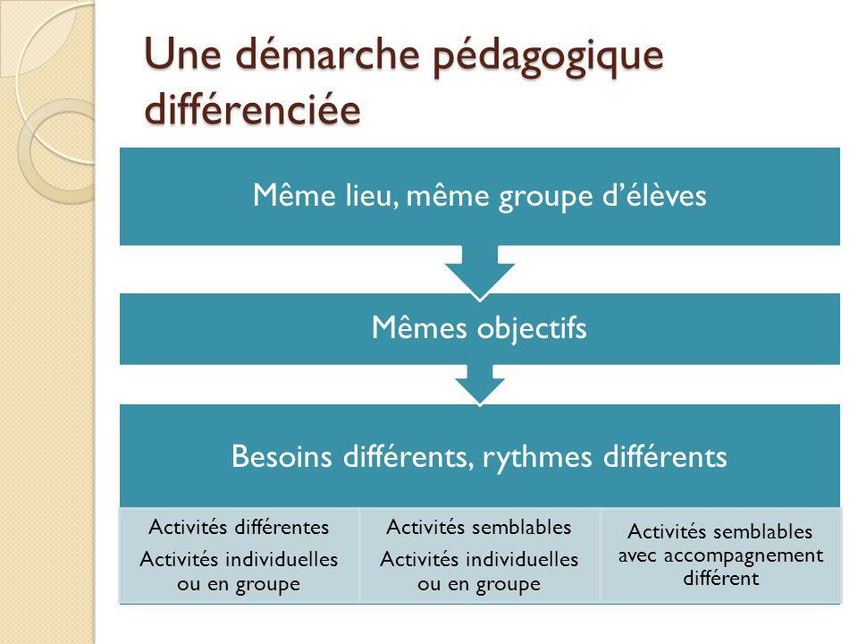 Une démarche pédagogique différenciée Besoins différents, rythmes différents Activités différentes Activités individuelles ou en groupe Activités semb