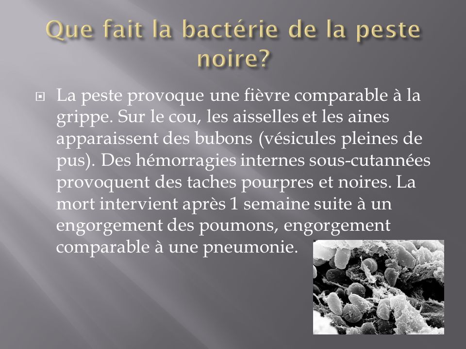 La peste provoque une fièvre comparable à la grippe. Sur le cou, les aisselles et les aines apparaissent des bubons (vésicules pleines de pus). Des hé