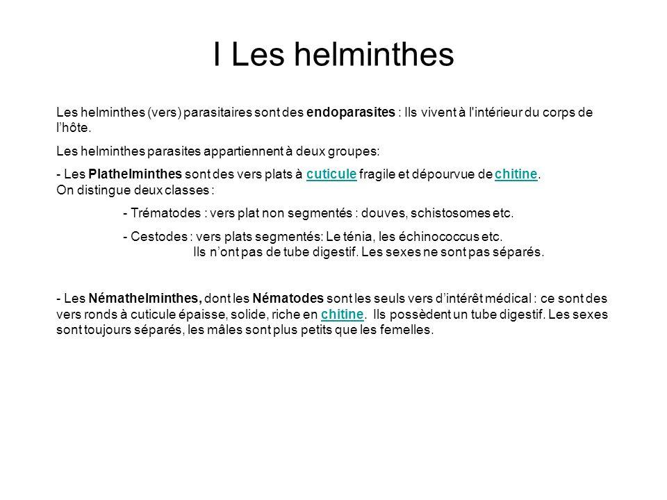 I Les helminthes Les helminthes (vers) parasitaires sont des endoparasites : Ils vivent à l'intérieur du corps de lhôte. Les helminthes parasites appa