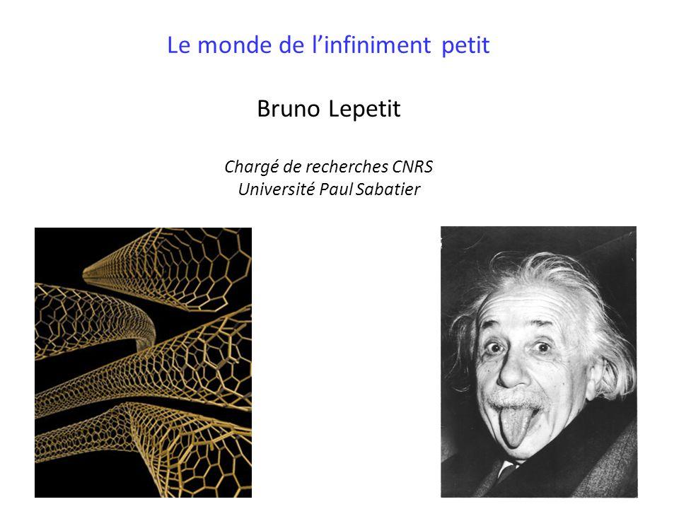 Le monde de linfiniment petit Bruno Lepetit Chargé de recherches CNRS Université Paul Sabatier