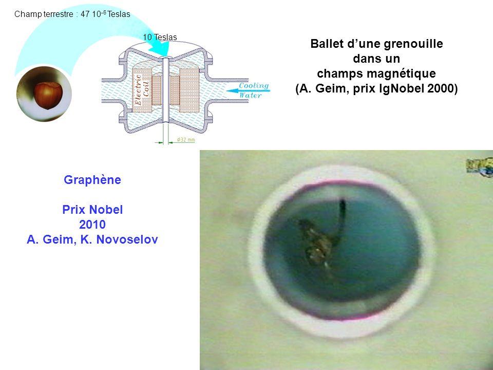 Ballet dune grenouille dans un champs magnétique (A. Geim, prix IgNobel 2000) Graphène Prix Nobel 2010 A. Geim, K. Novoselov 10 Teslas Champ terrestre