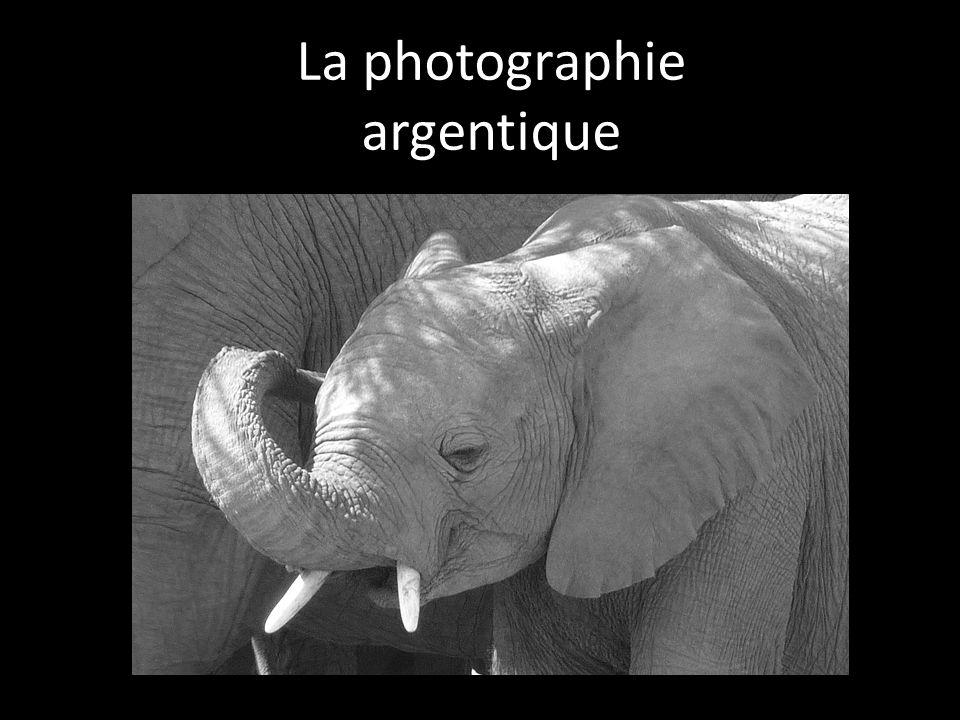film noir et blanc Couche anti-abrasion: protection de lémulsion.