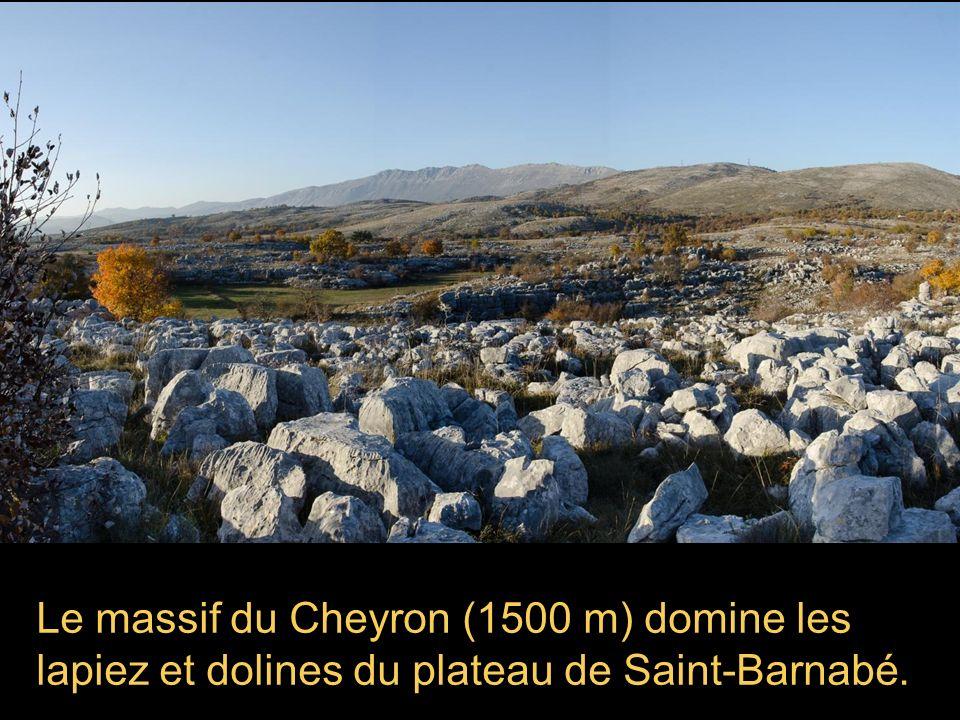 Automne au Col de Vence Photos et Diaporama 2min 30 Alain Grandjean novembre 2012