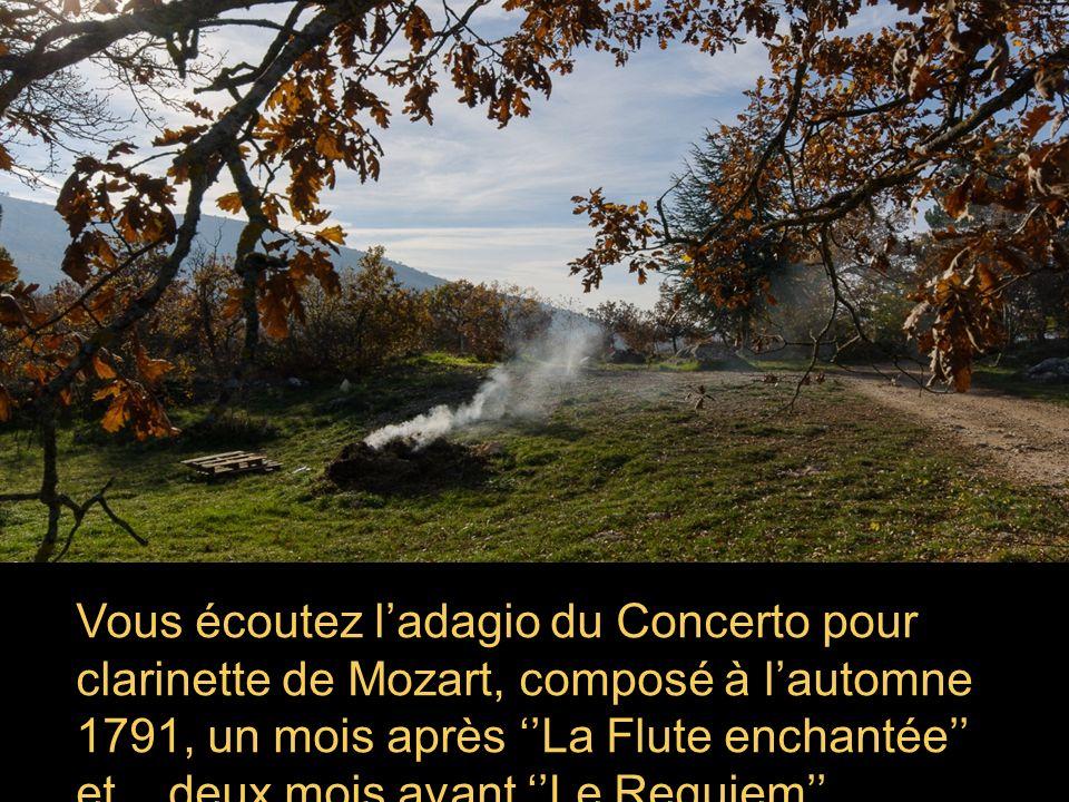 Vous écoutez ladagio du Concerto pour clarinette de Mozart, composé à lautomne 1791, un mois après La Flute enchantée et deux mois avant Le Requiem, inachevé.