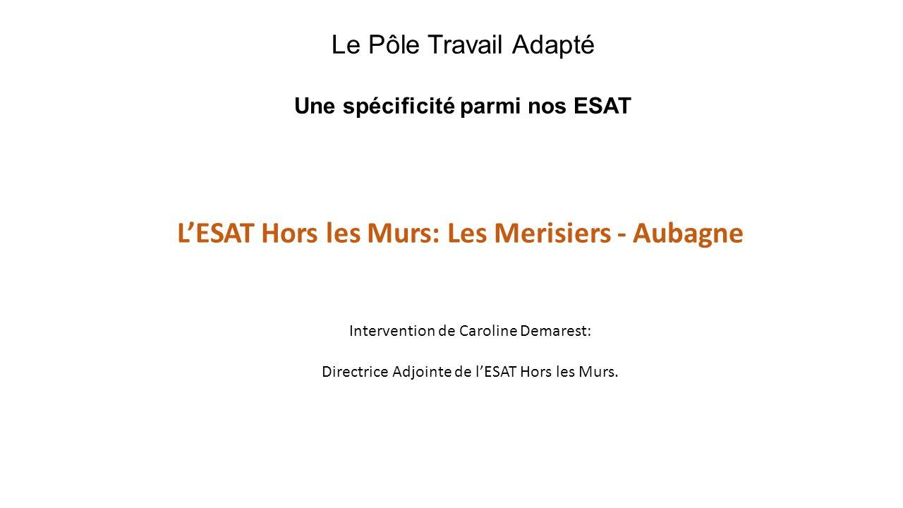 Le Pôle Travail Adapté Une spécificité parmi nos ESAT LESAT Hors les Murs: Les Merisiers - Aubagne Intervention de Caroline Demarest: Directrice Adjoi