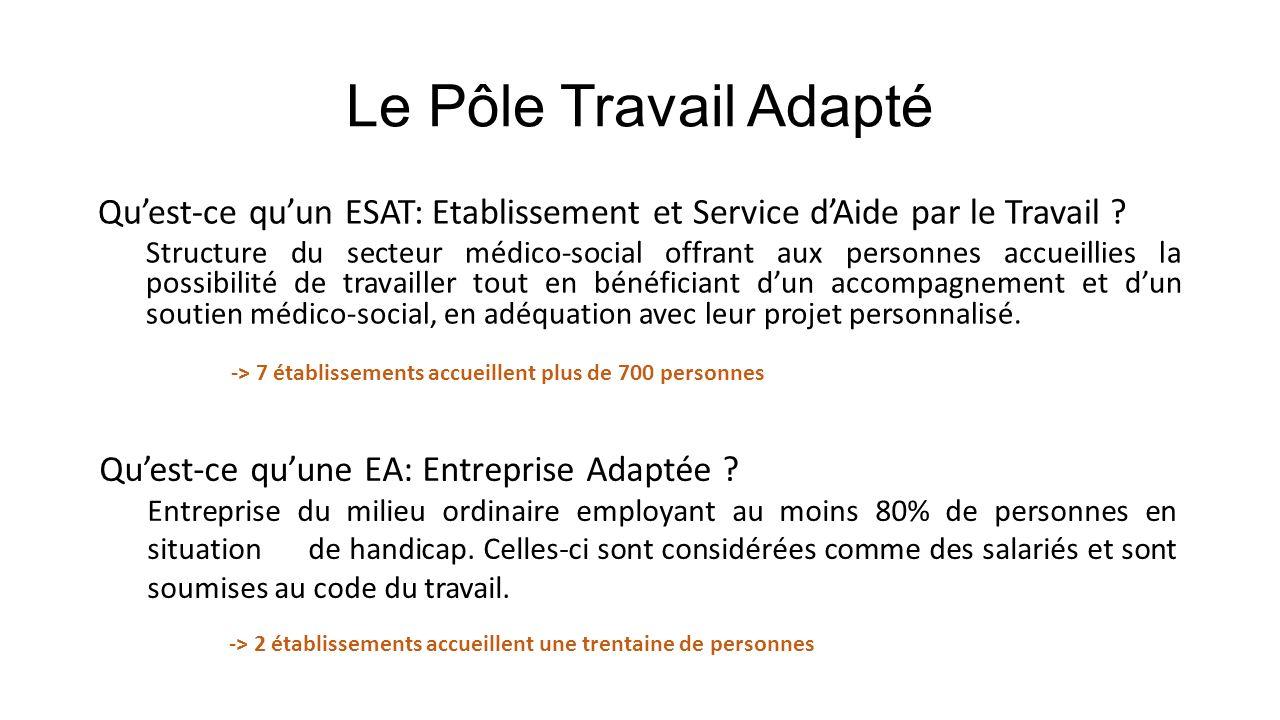 Le Pôle Travail Adapté Quest-ce quun ESAT: Etablissement et Service dAide par le Travail ? Structure du secteur médico-social offrant aux personnes ac