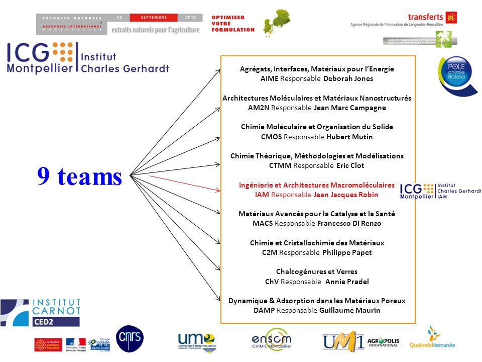 9 teams Agrégats, Interfaces, Matériaux pour lEnergie AIME Responsable Deborah Jones Architectures Moléculaires et Matériaux Nanostructurés AM2N Respo