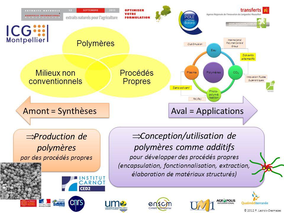 Amont = SynthèsesAval = Applications Production de polymères par des procédés propres Conception/utilisation de polymères comme additifs pour développ