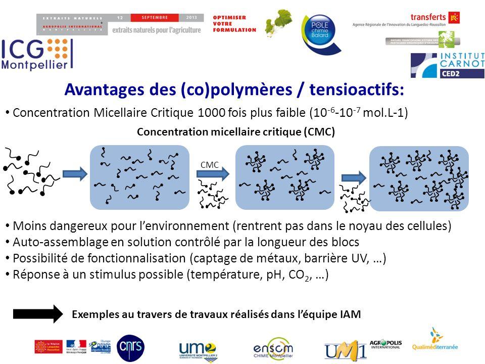 © 2013 P.Lacroix-Desmazes RITP pour copolymères à blocs amphiphiles (P.