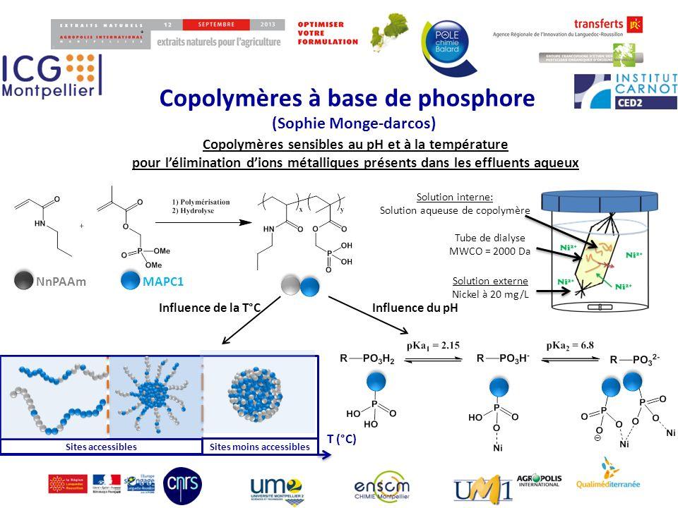 Copolymères à base de phosphore (Sophie Monge-darcos) 99 Matériau hybride Micelles CPI Tetraethyl orthosilicate (TEOS) + + Micelles de complexes polyioniques (CPI)Synthèse de matériaux mésoporeux Si(OEt) 4 1) pH = 2 2) pH = 5 Matériau mésoporeux calcination hPMAPC1 4k -b-P(PEGMA) 20K PEO 5K -b-PDMAEMA 2.5K 3) 70 °C pH = 4 Formation de micelles de complexes ioniques à partir de copolymères à blocs hydrophiles Collaboration avec Corine Gérardin (MACS-ICGM)