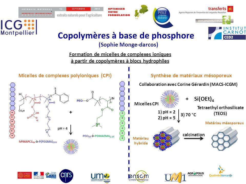 Copolymères à base de phosphore (Sophie Monge-darcos) 99 Matériau hybride Micelles CPI Tetraethyl orthosilicate (TEOS) + + Micelles de complexes polyi