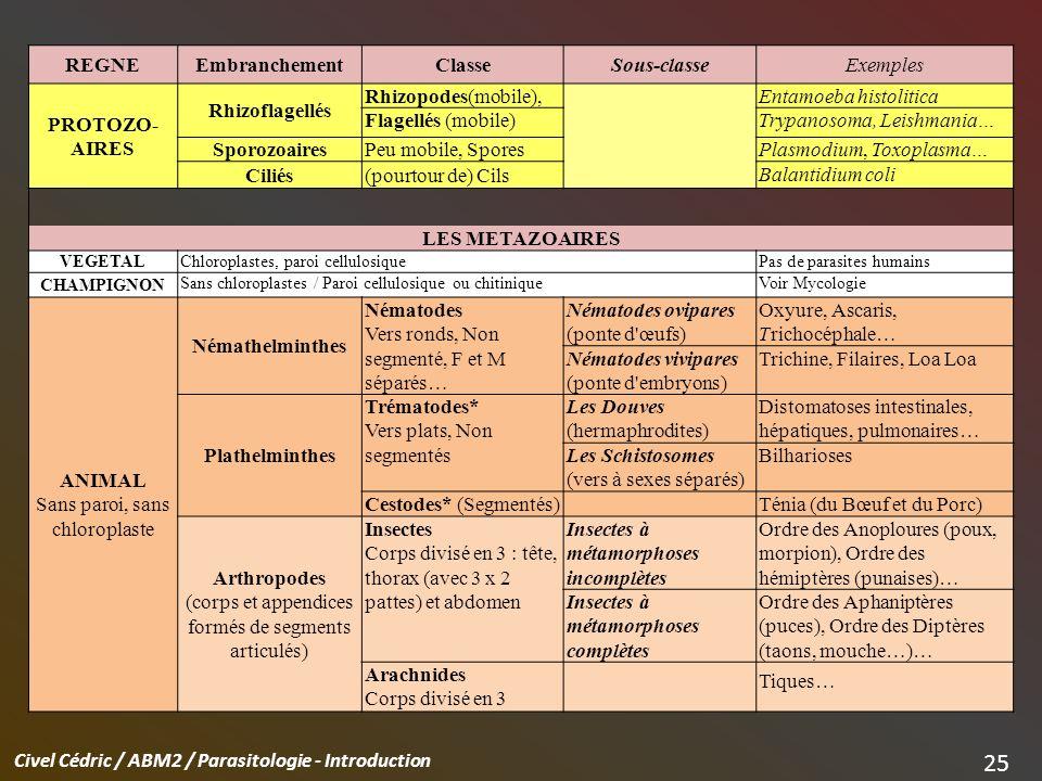 Civel Cédric / ABM2 / Parasitologie - Introduction 25 REGNEEmbranchementClasseSous-classeExemples PROTOZO- AIRES Rhizoflagellés Rhizopodes(mobile),Ent
