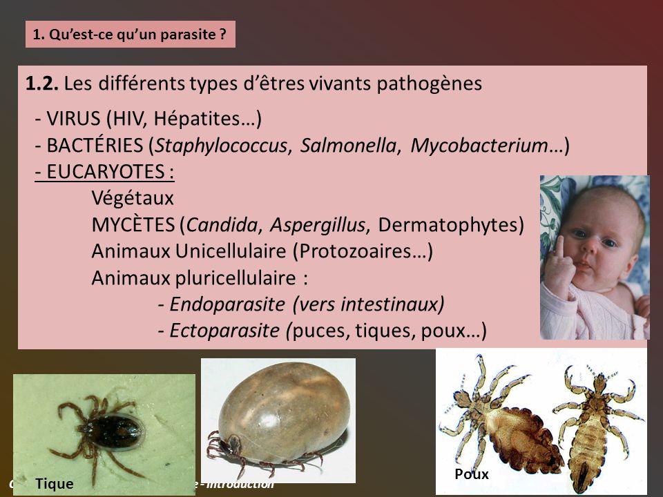 Civel Cédric / ABM2 / Parasitologie - Introduction 7 1.