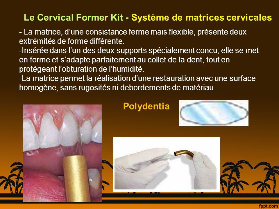 Le Cervical Former Kit - Système de matrices cervicales - La matrice, dune consistance ferme mais flexible, présente deux extrémités de forme différen