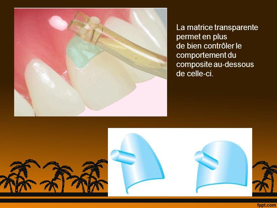 La matrice transparente permet en plus de bien contrôler le comportement du composite au dessous de celle ci.