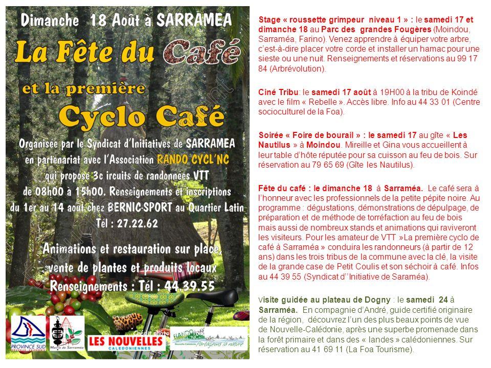 Stage « roussette grimpeur niveau 1 » : le samedi 17 et dimanche 18 au Parc des grandes Fougères (Moindou, Sarraméa, Farino). Venez apprendre à équipe