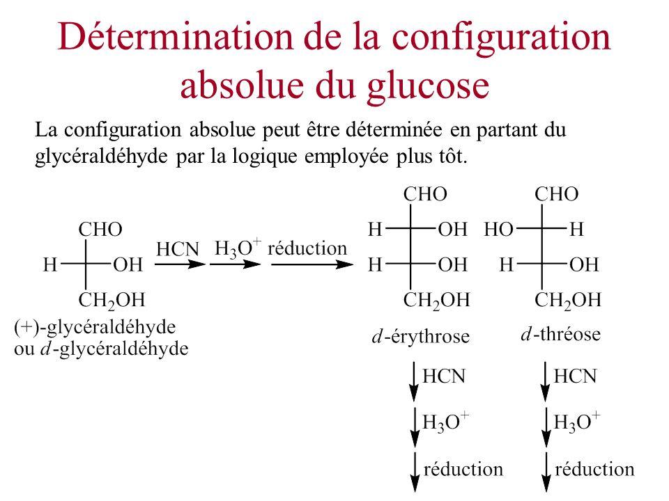 Détermination de la configuration absolue du glucose La configuration absolue peut être déterminée en partant du glycéraldéhyde par la logique employé
