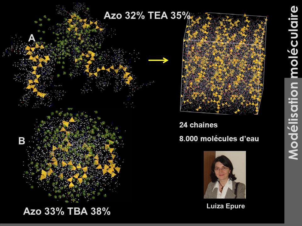 Azo 33% TBA 38% Azo 32% TEA 35% 24 chaines 8.000 molécules deau Modélisation moléculaire A B