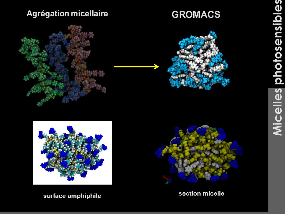 Micelles photosensibles Agrégation micellaire surface amphiphile GROMACS section micelle