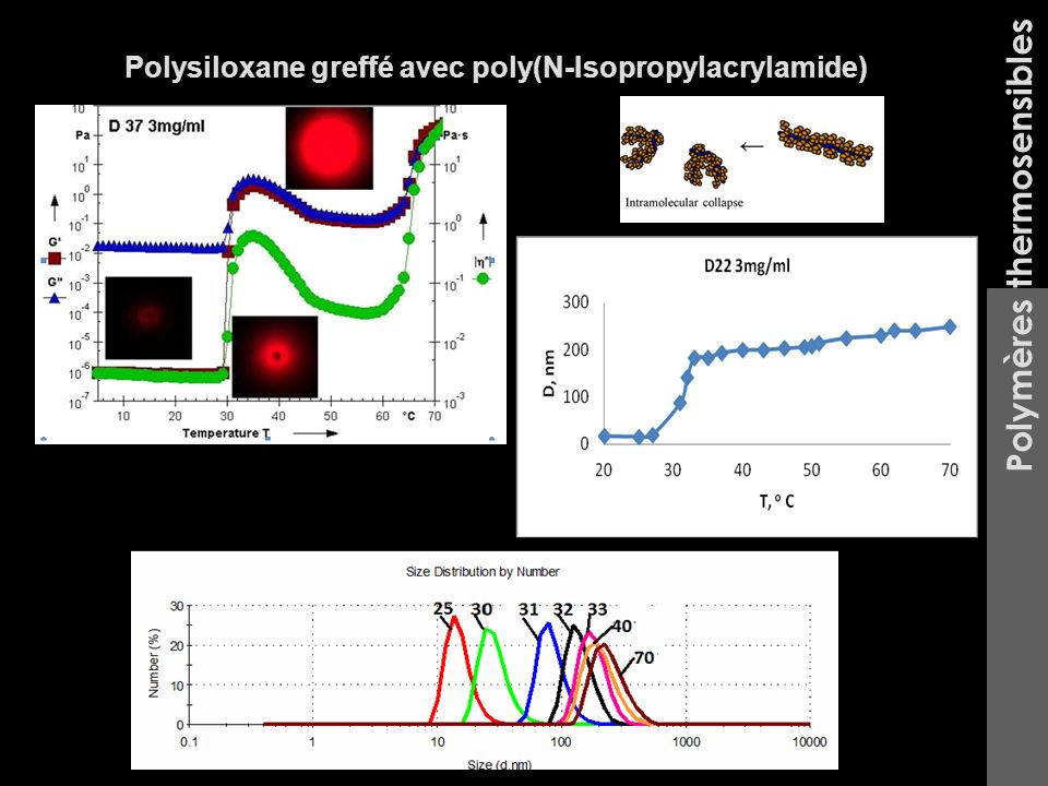 Polymères thermosensibles Polysiloxane greffé avec poly(N-Isopropylacrylamide)