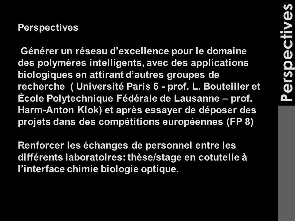 Perspectives Générer un réseau dexcellence pour le domaine des polymères intelligents, avec des applications biologiques en attirant dautres groupes de recherche ( Université Paris 6 - prof.