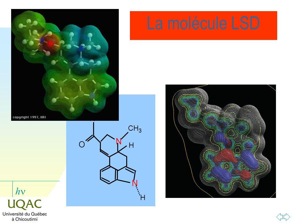 h La molécule LSD N H O N CH 3 H N